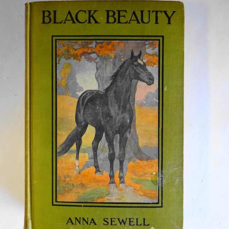 Black Beauty Original Book Cover : Best black beauty covers images on pinterest