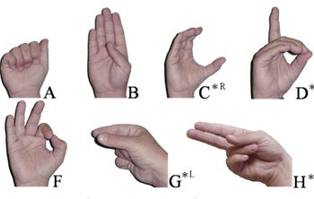 Video Conferencing Enables Sign Language Lessons