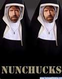 Image detail for -Chuck Norris | Funny Wall Photos