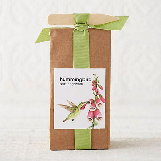 Hummingbird Habitat Scatter Garden