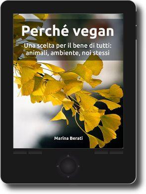3. Ma allora cosa mangiano i vegan? (pasti vegan, dalla colazione, al pranzo, alla cena) - VegFacile