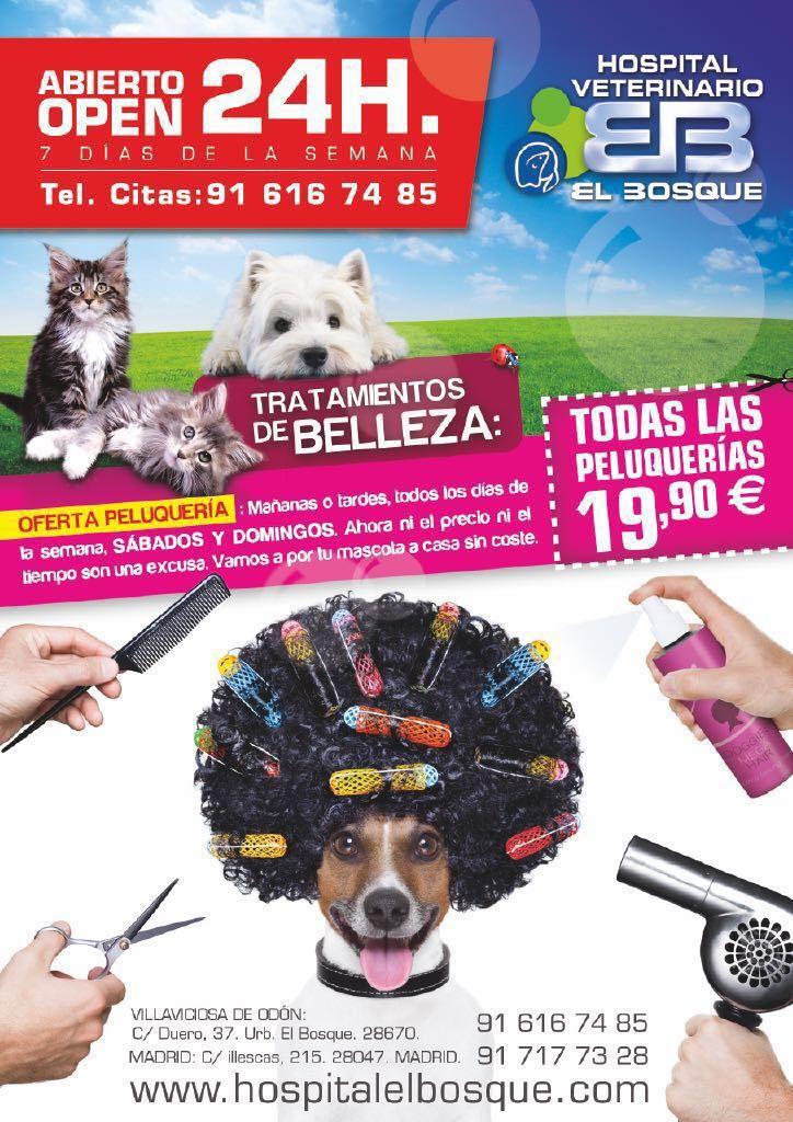Ellos también quieren estar guapos para recibir a la familia, aprovéchate de nuestras GRANDES ofertas. Peluqueria canina, peluqueria de perros madrid