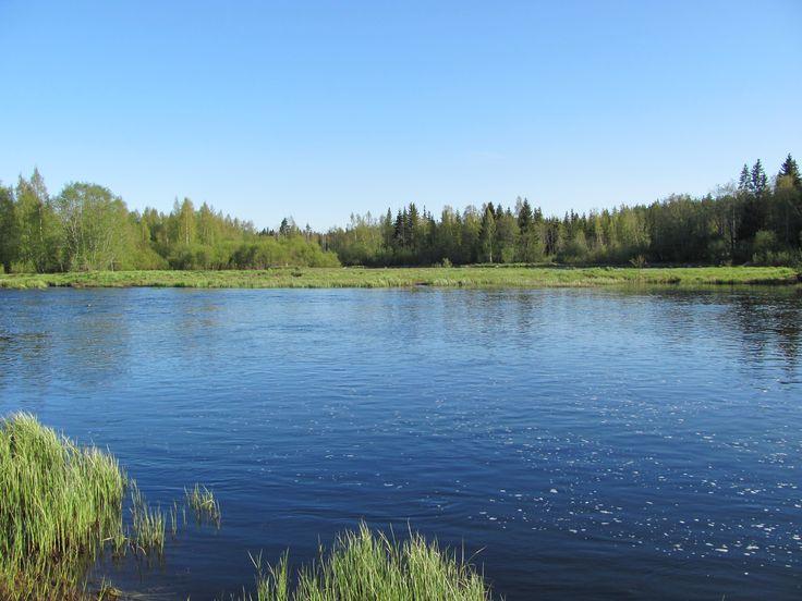 Perhonjoki, Rimmi, Kokkola