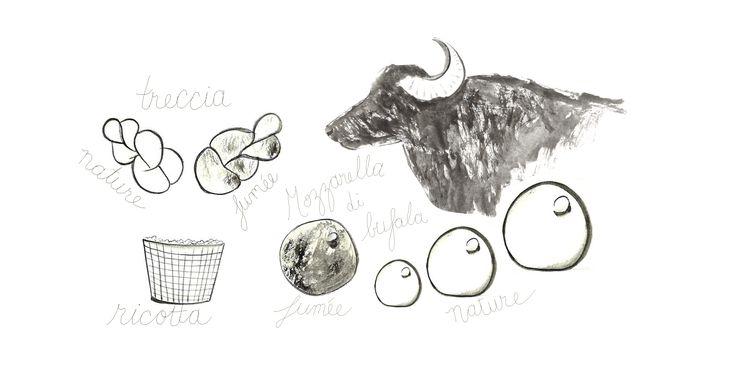 produits au lait de bufflonne : mozzarella di bufala, treccia (nature, fumée)…