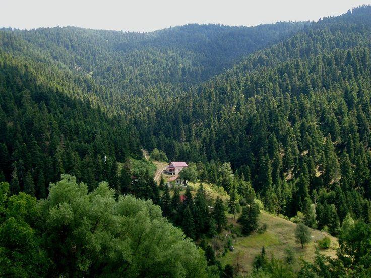 Pertouli Trikala - Thessaly - Greece