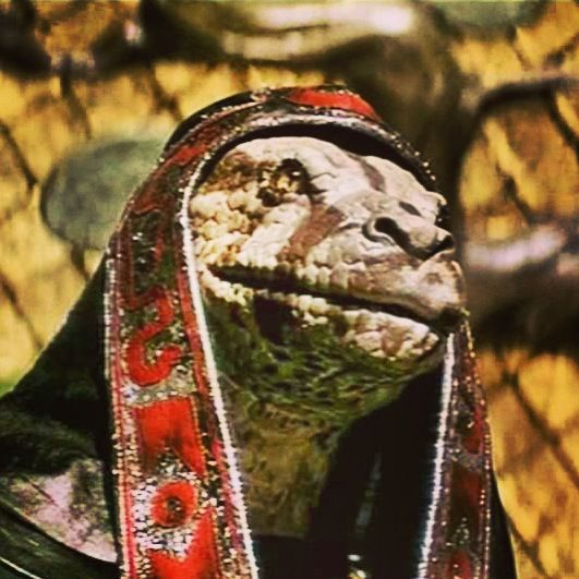 Shapeshifting reptile in the 1982 film Conan the Barbarian