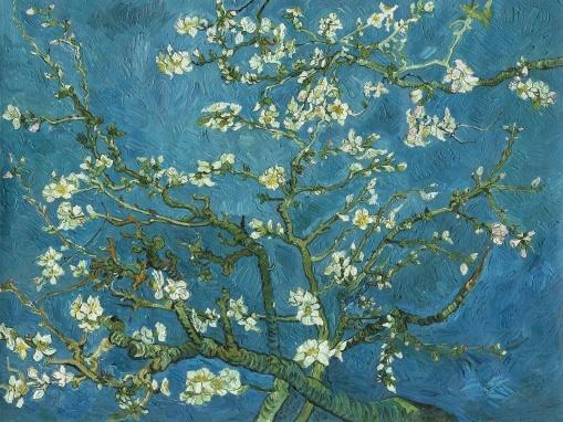 ALMOND BLOSSOM WALLPAPER blossom wallmural wallpaper