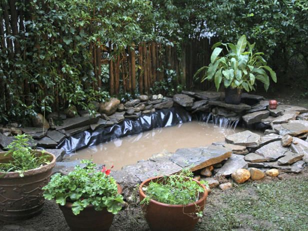 Do It Yourself Ponds | Outdoor Pond Installation : Outdoors : Home & Garden Television