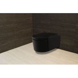 Ceramic Toilet - Model 4572 Black