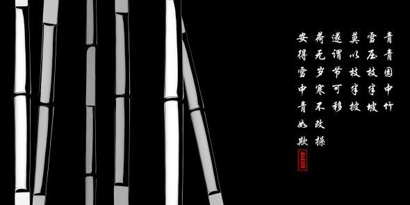 beautiful bamboo.