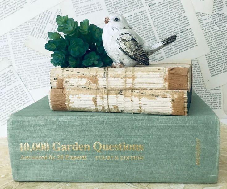 Gartenbuch 10 000 Gartenfragen Gartenbau Geschenk Fur Gartner Pflanzen Gartenbuch Grunes Garten Buch Vintage Gartenbu Gartenbuch Gruner Garten Gartenbau