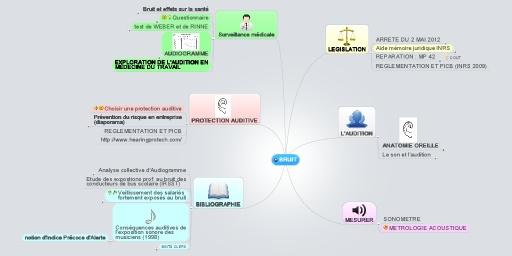MindMeister Mind Map: BRUIT