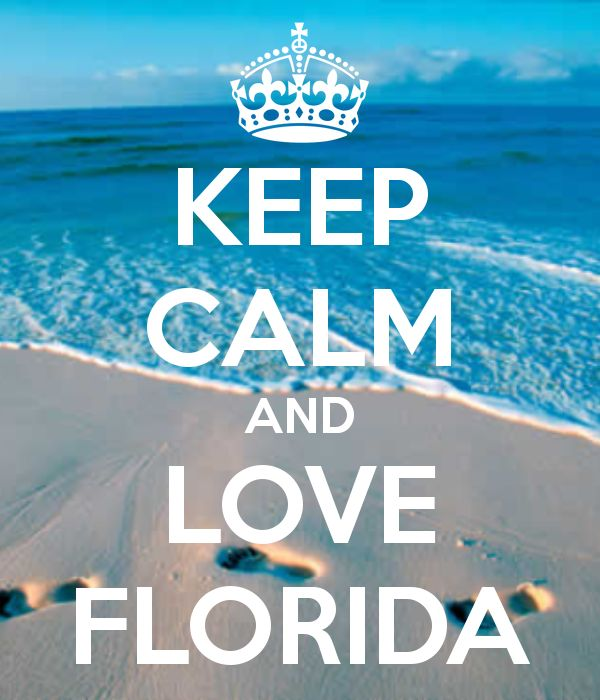 KEEP CALM AND LOVE FLORIDA - KEEP CALM AND CARRY ON Image Generator - brought to you by the Ministry of Information