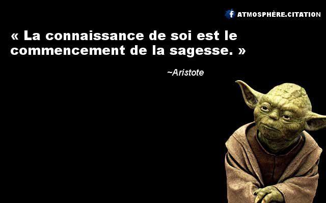 Aristote                                                                                                                                                                                 Plus