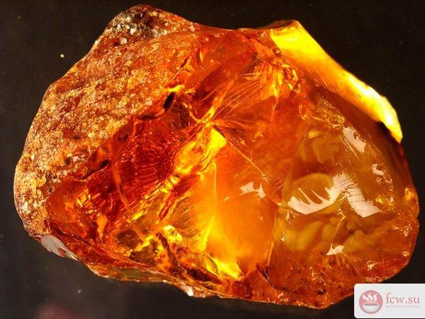 Лечебные свойства янтаря https://www.fcw.su/blogs/zdorove/lechebnye-svoistva-jantarja.html  Янтарь давно и успешно применяют в ювелирном деле. Из него не только делают шикарные кулоны или серьги, но и украшают им шкатулки, вазы, предметы мебели. Многие знают, что янтарь обладает полезными свойствами, даже лечебными. Так как этот минерал образуется из застывшей смолы, его происхождение можно считать растительным. Такое «живое» возникновение позволяет янтарю иметь целый набор лечебных…