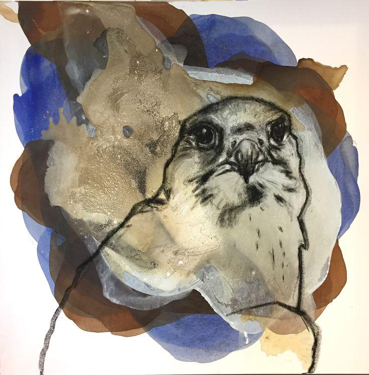 «Jaktfalk». Akryl og pastellkritt på lerret. 80x80 cm