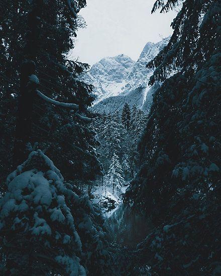 Winter Landscape by regnumsaturni