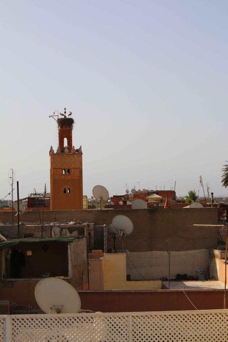 Marrakech, Marruecos. Visita mi página web para leer mis aventuras en Marruecos: https://unachicatrotamundos.wordpress.com/2016/08/03/marrakech-una-ciudad-de-colores-y-especias/