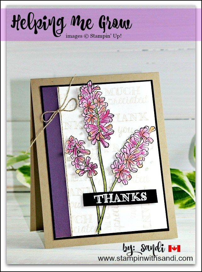 Helping me Grow with Watercolor pencils by Sandi @ stampinwithsandi.com Canadian Stampin Up Demonstrator