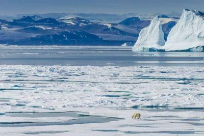Schimbările climatice determină deplasarea Polului Nord spre Europa cu 10 centimetri pe an http://www.antenasatelor.ro/curiozit%C4%83%C5%A3i/natura/8977-schimbarile-climatice-determina-deplasarea-polului-nord-spre-europa-cu-10-centimetri-pe-an.html