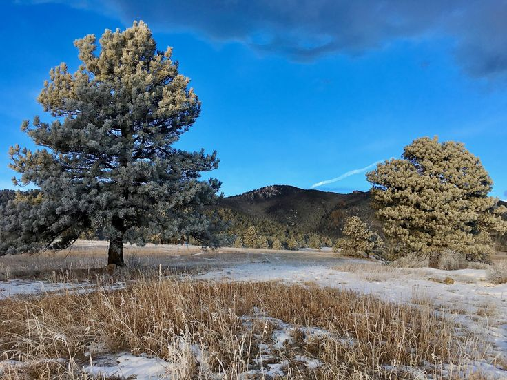 It's a frigid morning in Evergreen, Colorado and Bergen Peak forms a dark backdrop, brooding over a lonely meadow. A strange ambiance engulfs the landscape as morning light struggles to leak through the dense atmosphere.