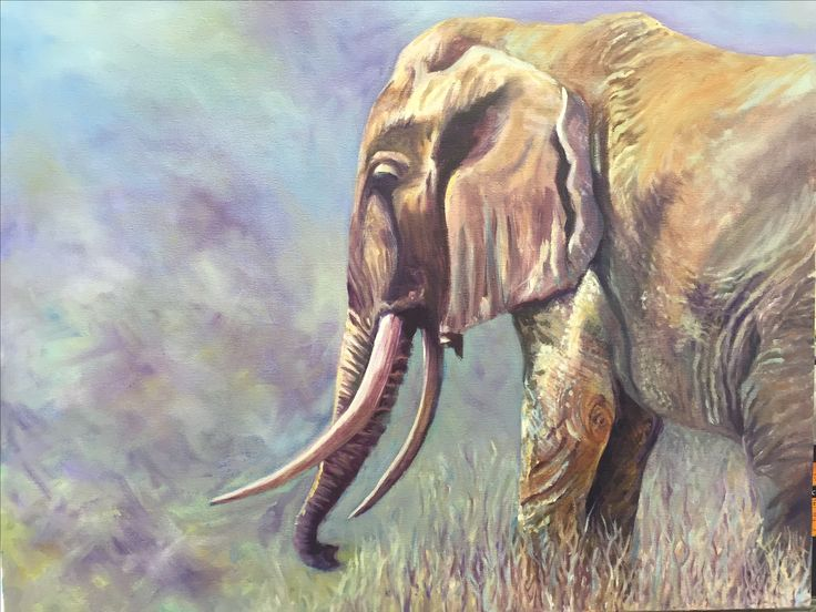 Elephant - 70x60cm Sue Smyth