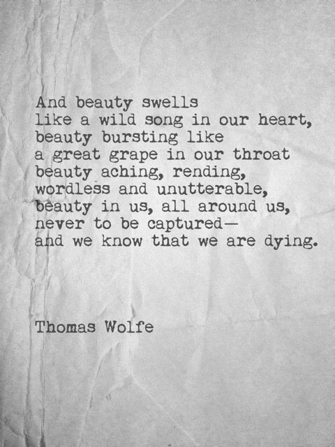 And beauty swells like a wild song in our heart, beauty bursting like a great grape in our throat, beauty aching, rending, wordless and unutterable, beauty in us, all around us, never to be captured – and we know that we are dying. ~ Thomas Wolfe