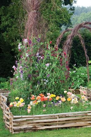 Fenced In Garden Design grow a healthy vegetable garden Find This Pin And More On Gardening