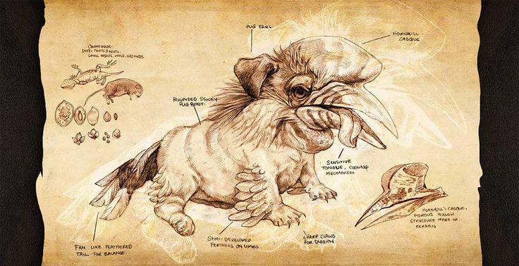Pug x Hornbill