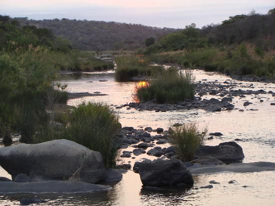 Discounted Rates for Big 5 Game Reserve Holidays in KZN, South Africa when you book through us. Showmethebig5@gmail.com or Debbie@weddingflair.co.za