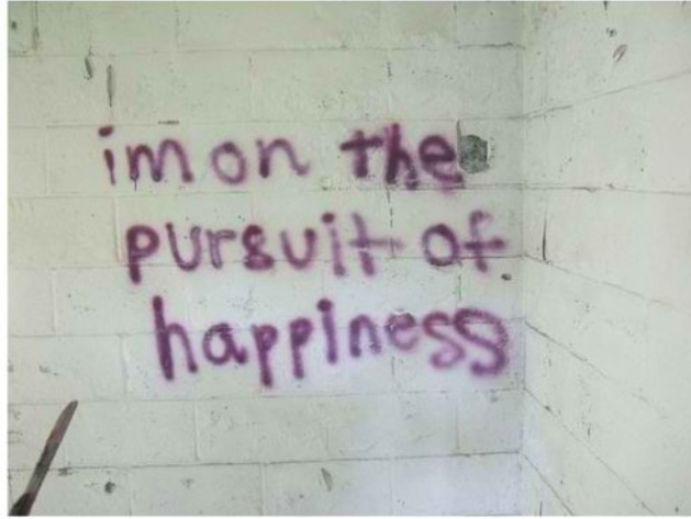 Pursuit of happines