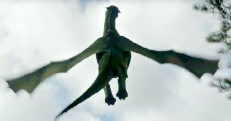 New Pete's Dragon Footage Shows Elliott Taking Flight -- Watch as young Pete takes off on the back of his dragon Elliott in a trailer teaser for Pete's Dragon. -- http://movieweb.com/petes-dragon-remake-trailer-2-teaser-elliott-flying/