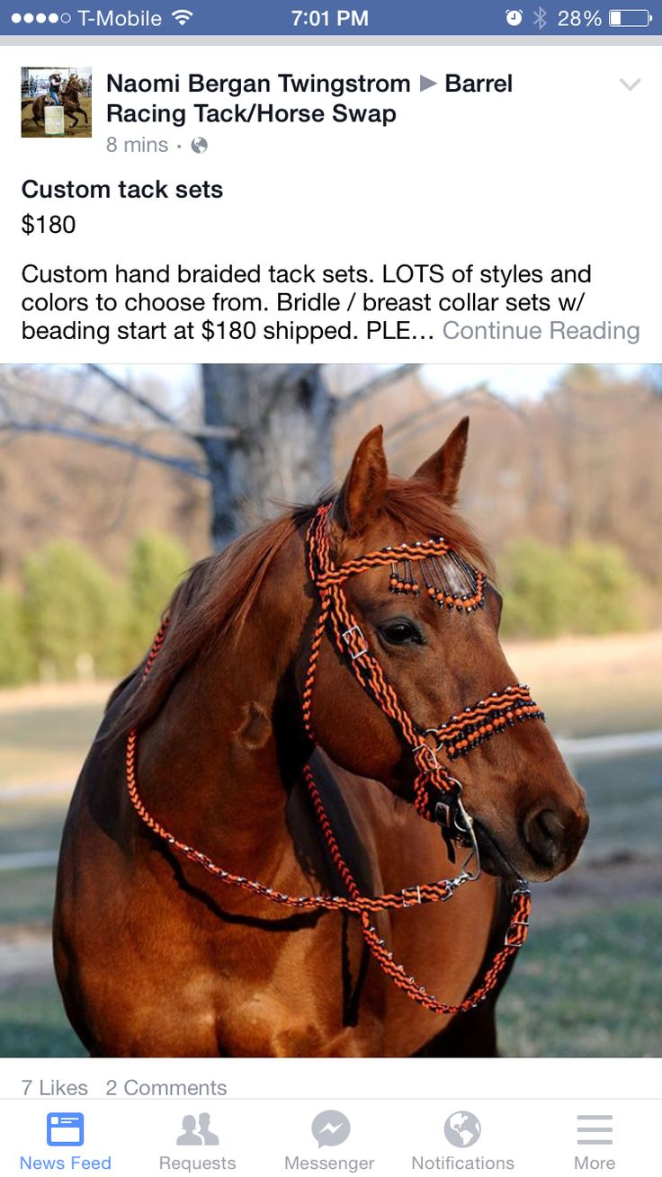 Pin by kayleigh pivonka on leather work pinterest for Paracord horse bridle