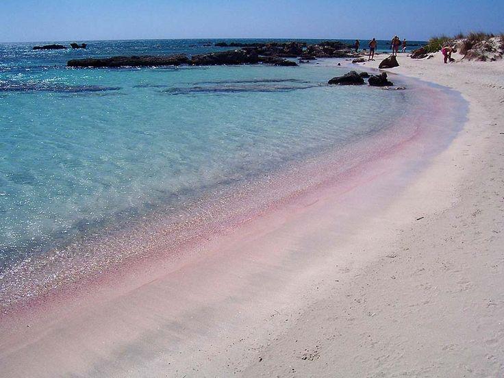 Explore The Beauty Of Caribbean: The 25+ Best Pink Sand Beach Bahamas Ideas On Pinterest