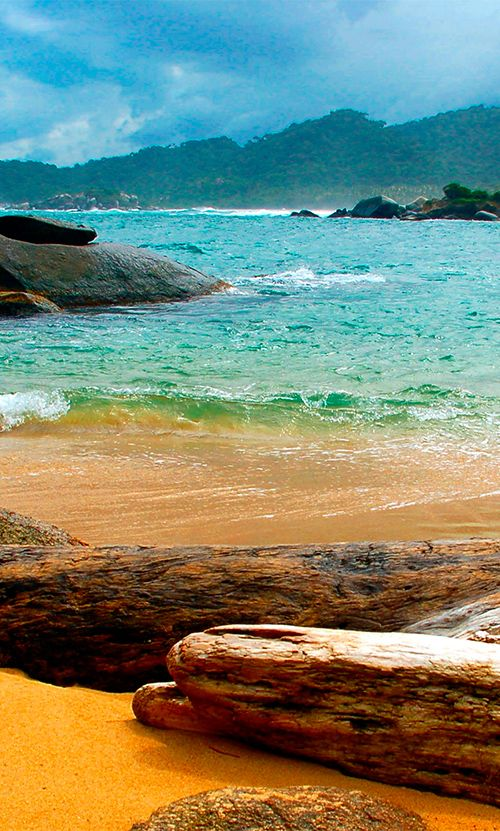 Tayrona National Park features everything from snowy mountains to tropical rainforest to carribean beaches. Incredibly diverse, incledibly beautiful! #Colombia #TayronaNationalPark #Carribean #beach #Nationalpark #nature #ecotourism #travelandmakeadifference