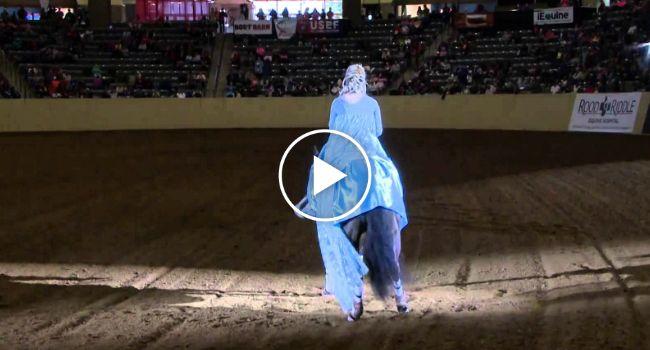 Espetáculo Com Cavalo Deixa Público Encantado Com Incrível Performance http://www.funco.biz/espetaculo-cavalo-deixa-publico-encantado-com-incrivel-performance/