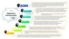 Principales estudios evaluadores a nivel mundial: pruebas estandarizadas. Definición de evaluación, desglose y esquema gráfico de las diferentes pruebas internacionales.