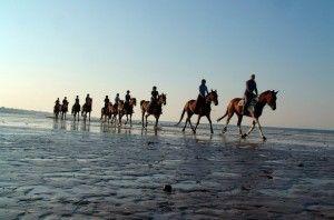 Balade à cheval sur les plages de Normandie