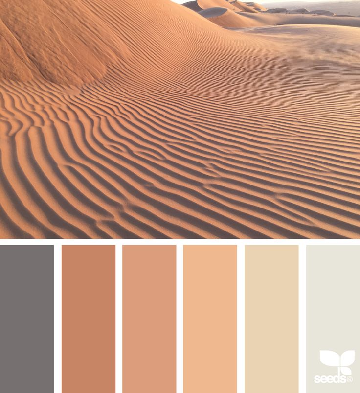 Color Wander via @designseeds