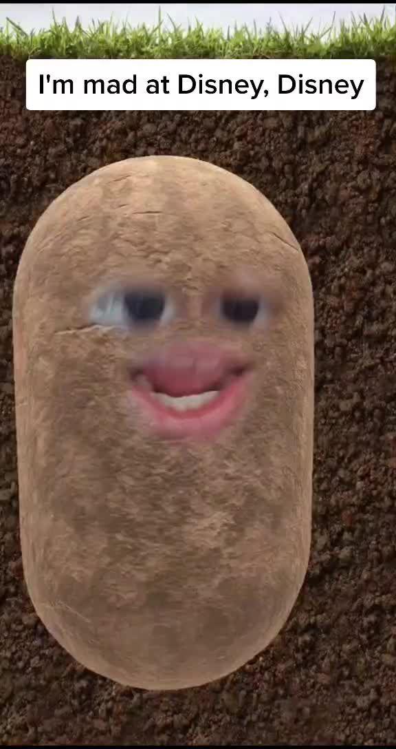 Pebble Le Potato Pebble The Potato On Tiktok I M A Potato With Big Dreams Madatdisney Potato Singing Semuanya Lucu Seni Manga Seni