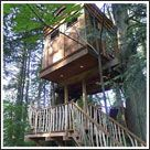 Bonbibi - TreeHouse Point, Washington Stay in a treehouse!