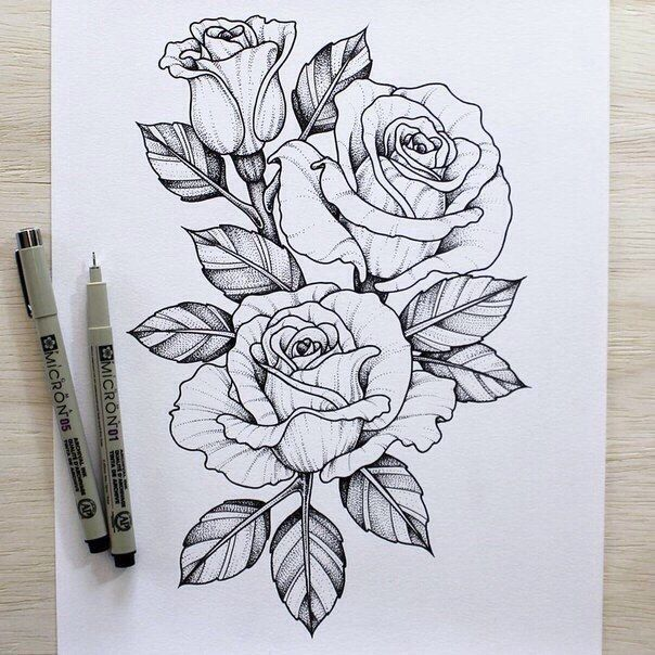 The 25+ best ideas about Rose Outline on Pinterest ...