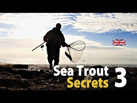 UK vers. Sea Trout Secrets 3 Spin Fishing / Spring - (More info on: http://1-W-W.COM/fishing/uk-vers-sea-trout-secrets-3-spin-fishing-spring/)