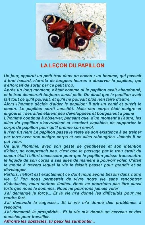 La leçon du papillon. https://www.facebook.com/MadeInHumanity?fref=ts