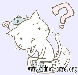 Альтернативное лечение при креатинине 6,74мг/дл и функции почек 8,6 мл/мин/1,73м2 http://kidney-cure.org/faqs/1169.html Вопрос: Добрый день, доктор! Мне хочется узнать более о альтернативном лечении. Мой креатинин 6,74 мг/дл и функции почек остальные 8,6 мг/мин/1,73м2.