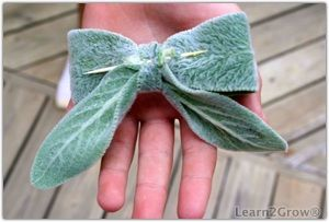 I used to make these all the time. They dry beautifully and ate nice to glue on presents wrapped in Kraft paper.