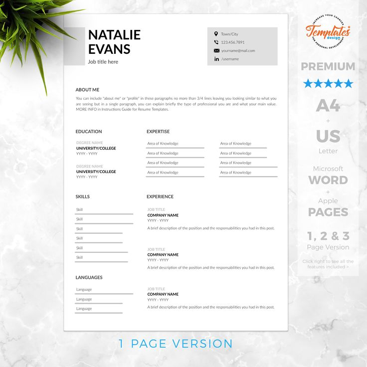Simple & Classic Resume Instant Download / Clean Resume