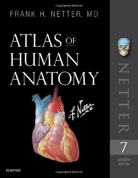 Atlas Of Human Anatomy 7e 2018 Gii Phu Hc Pinterest Human