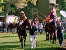 Racing Victoria - Racing Victoria Limited - Healesville given green light