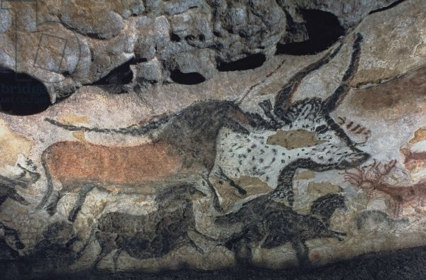 art history hall of bulls and Hall of the bulls: lascaux medium: the branch of art history which studies the identification hall of the bulls, cave of altamira spain.